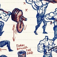 illustrated workout program, squats, facepulls and foam rolling