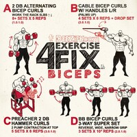 4 Exercise Fix - Build Biceps